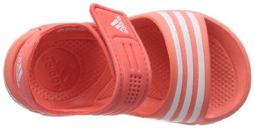 Adidas performance - Tongs / Sandales - Akwah 8l Bb - Orange