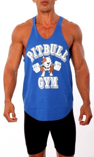 8d3fb19bea1d91 Pitbull Gym