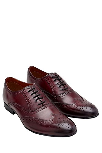 next Hombre Zapato Brogue Oxford Borgoña