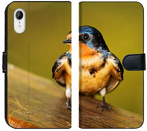 Liili Premium iPhone XR Flip Micro Fabric Wallet Case Barn Swallow Hirundo Rustica Perching on a Fence in Maryland During The Spring Image ID 19844083