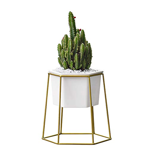 Urn Stand Plant - Flexzion Planter Pot - Small Modern Decorative White Ceramic Flower Vase Container Holder for Indoor Outdoor Garden House Plant Succulent Herb Mini Cactus Artificial Flower with Metal Iron Rack Stand