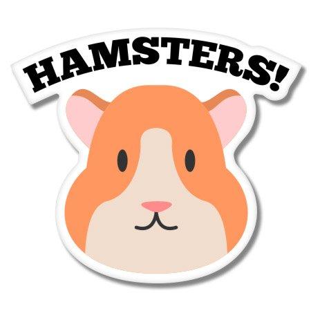 Weather Hamster Bottle - 4