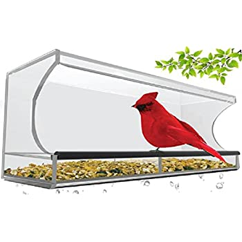 Large Clear Window Mounted Bird Feeder with 4 Strong Suction Cups. Great Gift for Bird or Cat Lovers. Simple to Install, Easy to Fill.
