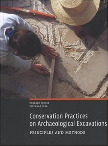 Book Conservation Practices on Archaeological Excavations: Principles and Methods 1st edition by Pedelì, Corrado, Pulga, Stefano (2014)