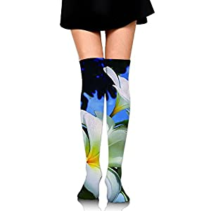 Hawaii Flower Women's Compression Stocking Long Tube Knee High Socks For Women