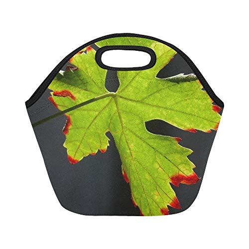 Redhead Screws - Insulated Neoprene Lunch Bag Screw Autumn Summer Leaf Leaves Green Redhead Large Size Reusable Thermal Thick Lunch Tote Bags For Lunch Boxes For Outdoors,work, Office, School