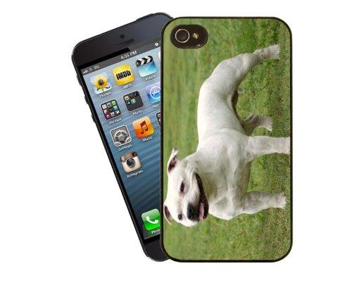 Staffordshire Bull Terrier étui pour téléphone portable, design 6–Housse pour Apple iPhone 5/5C/5S/