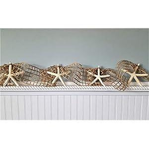 41r61lyPehL._SS300_ Best Seashell Wedding Decorations