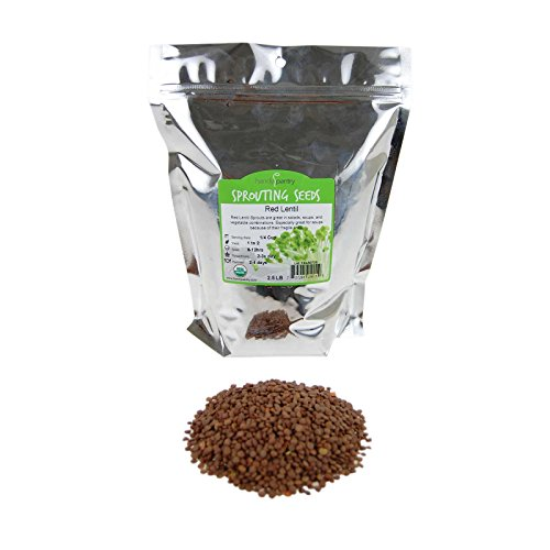 Organic Red Lentil Sprouting Seeds -2.5 Lbs - Handy Pantry Brand - Red Lentils- Perfect for Garden Seeds, Gardening, Salad, Soup, Sprouts & Food Storage -