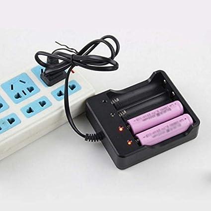 Amazon.com: Cargador de batería de 4 ranuras con protección ...
