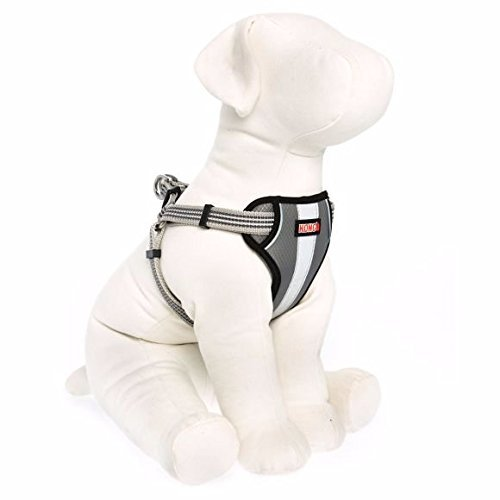 Product image of KONG Reflective Dog Harness Grey Small