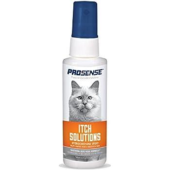 Amazon Com Zymox Pet Spray With Hydrocortisone 2 Ounce