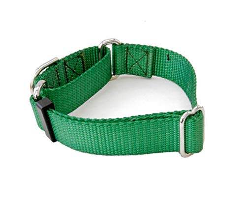 1 Inch Martingale Dog Collars - Heavy Duty Nylon (1
