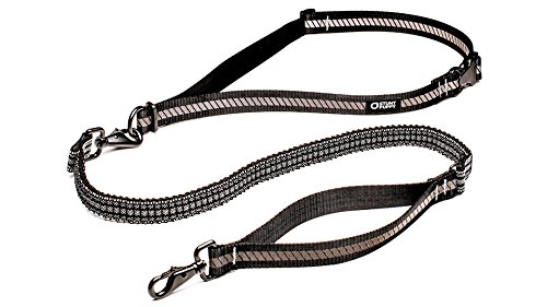 Stunt Puppy Go Dog Glo Runner Hands-Free Leash, Black by Stunt Puppy