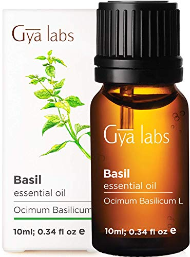 Gya Labs Basil Essential Oil for Focus and Pain Relief – Topical for Sore Muscles, Headache Relief, Migraine Relief…