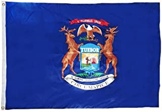 product image for Michigan Flag 12X18 Inch Nylon