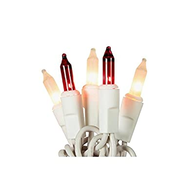 Set of 50 Red and Frosted Clear Mini Christmas Lights - White Wire