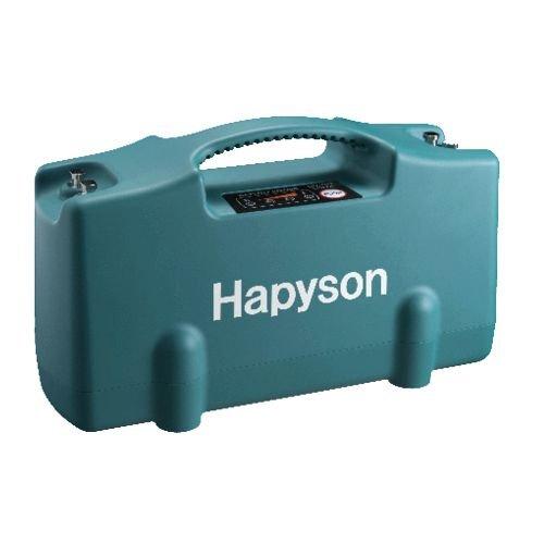 ハピソン(Hapyson) リチウムイオンバッテリーパック YQ-100の商品画像
