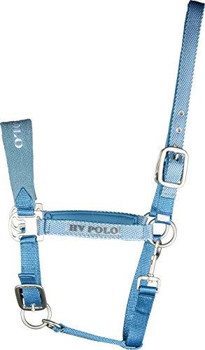 Pony Halfter HV Polo In Mint Pferdeausstattung & Zubehör