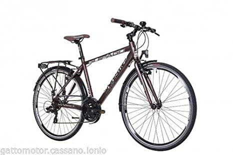 Bici Bicicletta Passeggio Whistle Guipago M49 1614t 21s Alluminio