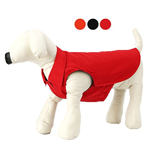 GabeFish Dog Puppy Fashion Cool Polo Collar Style Warm Jacket Coat For Pet Cat Winter Padded Lined Thick T Shirt Apparel Red Medium by GabeFish