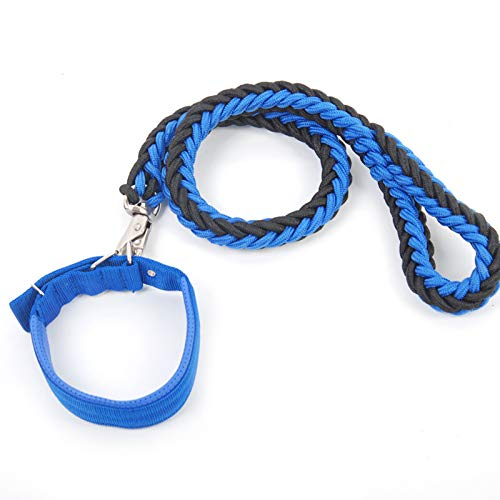 S Dog Lead Rope,Pet Leash with Soft Padded Nylon Braided Strong Heavy Duty Dog Training Lead Leash for Large and Medium Dogs 1.2m 3.9ft (Size   S)