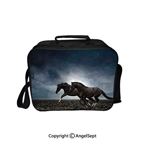 Compartment Lunch Bag for Men, Women,Couple Horses Running on Plowed Field in Stormy Dark Weather Sky Equestrian Concept Blue Black 8.3inch,Lunch Cooler Bag with Shoulder Strap (Best Equestrian Colleges In Us)