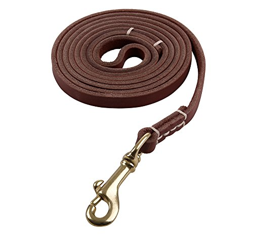 Reopet 4 Feet Real Genuine Leather Small & Medium Dog Leash - Brown,3/8