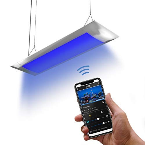 ONF Flat One Aquarium Light 24 inch or 36 inch, Blue and White LED, APP Remote Controlled, Dimmable Full Spectrum for…