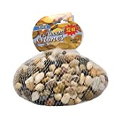 Greenbrier Bag of Decorative River Pebbles/accent Stones, 32 Oz Each 3 Bags