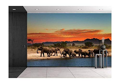 wall26 - Herd of Elephants in African Savanna at Sunset - Removable Wall Mural | Self-Adhesive Large Wallpaper - 100x144 inches ()