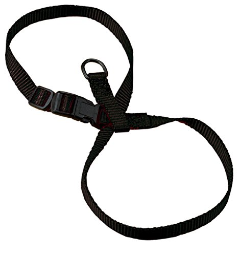 Hamilton 3/8-Inch Adjustable Figure 8 Pup-Cat Harness, Small, Black