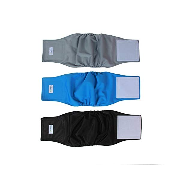 """Teamoy Reusable Wrap Diapers for Male Dogs, Washable Puppy Belly Band Pack of 3 (S, 10""""-13""""Waist, Black+ Gray+ Lake Blue)"""