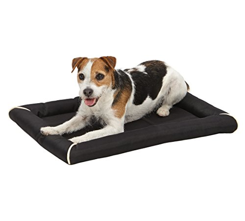 Maxx Dog Bed for