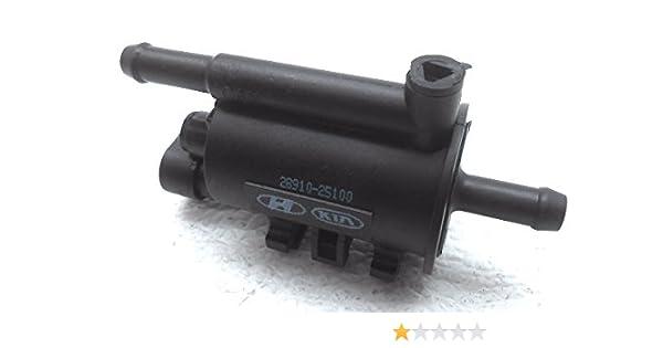 Genuine Hyundai 28910-25100 Purge Control Valve
