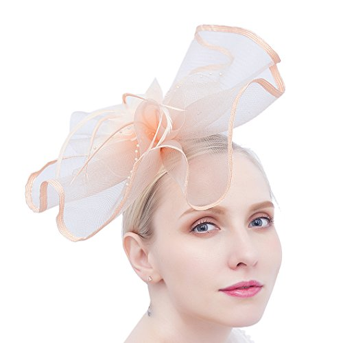 (Felizhouse Fascinator Hats for Women Beaded Flower Feather Veil Party Headband (#2 Coral Pink))