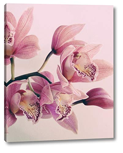 Pink Orchids by Urban Epiphany - 22