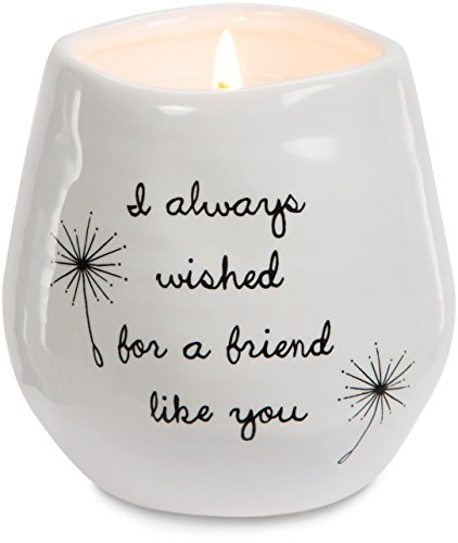 Pavilion Gift Company 77114 Plain Dandelion Wishes - I Always Wished for A Friend Like You White Ceramic Soy Serenity Scented Candle,
