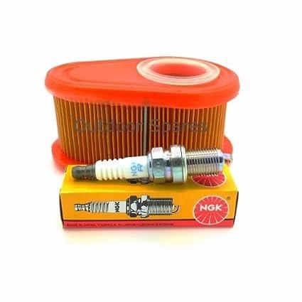Sanli cortacésped gasolina filtro de aire y bujía NGK Kit de ...