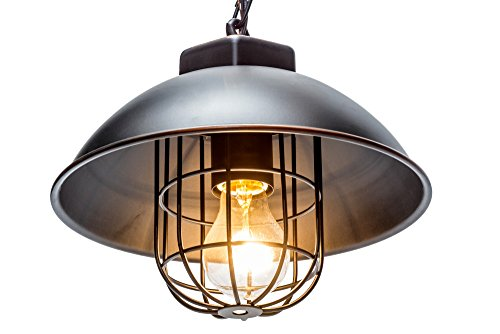 Globe Electric 64834 1-Light Vintage Edison Over Bulb Cage Pendant, Oil Rubbed Bronze