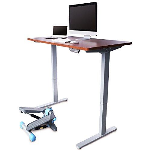 """Flexispot Electric 48"""" height adjustable standing desk"""