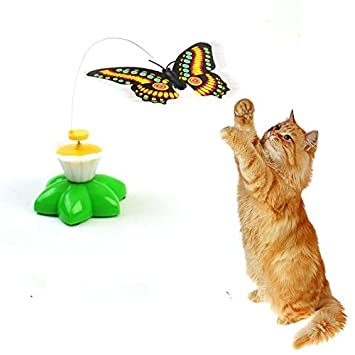 jouet chat butterfly