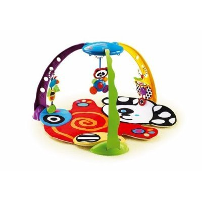 Fisher Price Miracles Milestones Playful