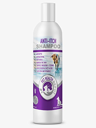 Pet Health Depot Anti-Itch Shampoo for Dogs & Cats - 8 fl oz by Pet Health Depot