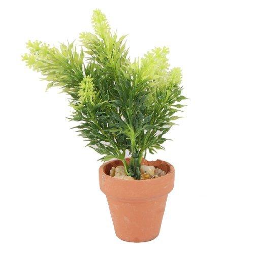 Jardin Bonsai grama sinttica Planta de vaso decorativo com base de cermica para aqurio, 6 polegadas Altura