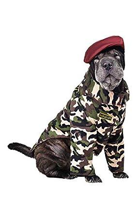Horror-Shop Traje de soldado para perros: Amazon.es ...