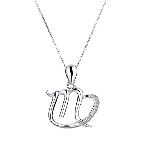 Zodiac Necklace Zirconia Sterling Birthday