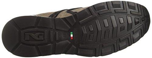 Giardini Sneaker Donna Beige A719471d Crack Bronce Nero TqdaT