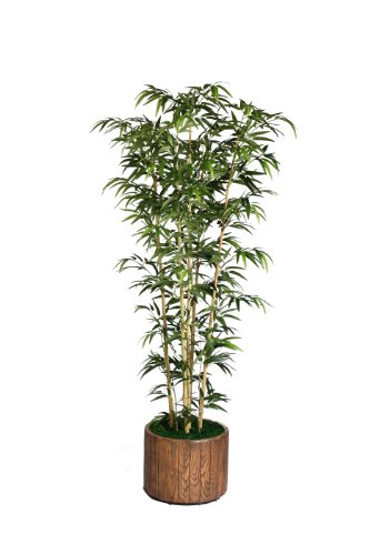 Bamboo Tabletop Silk Tree - Laura Ashley 77 Inch Tall Natural Bamboo Tree in 16 Inch Fiberstone Planter