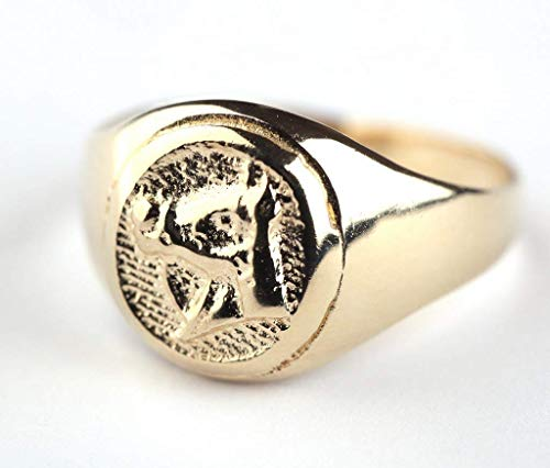 - Signet Ring for Men OR Women, Unique Handmade 14K Gold Plated Horse Seal Ring, Size US 5, Artisan Unisex Statement Jewelry